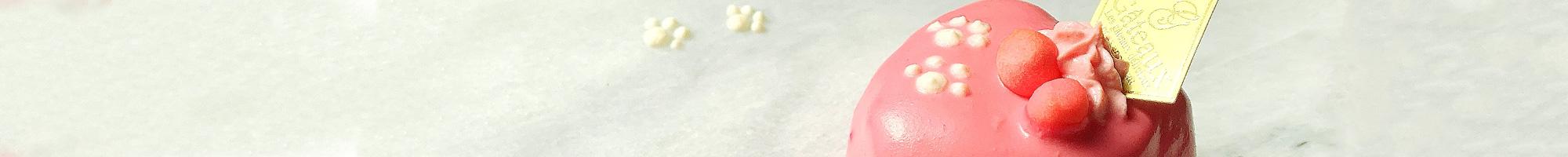 歯科セミナー×Dog Cake